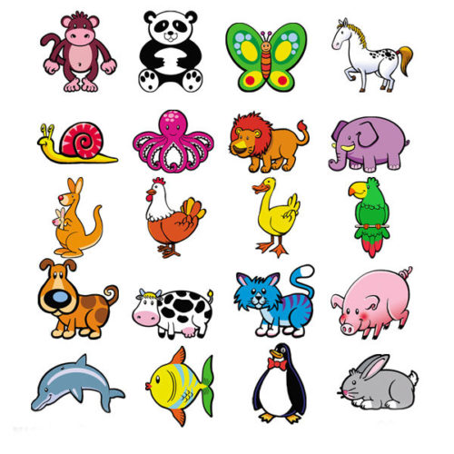 20 magneticos animales